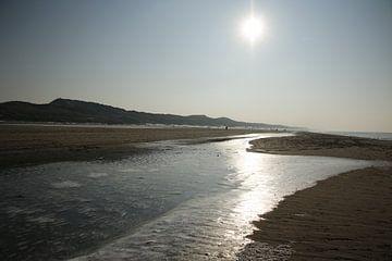 IJs op het strand van Cora Unk