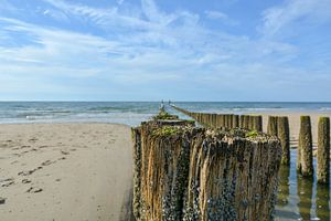 The cleanest beach