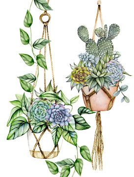 Pflanzenaufhänger Makramee von Geertje Burgers