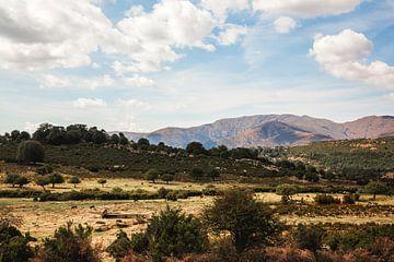 Berge auf Sardinien | Italien von Yvette Baur