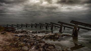 Into the storm van Henk Schmitz