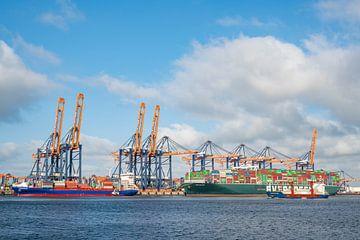 Containerschiffe am Containerterminal im Hafen von Rotterdam von Sjoerd van der Wal