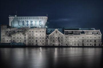 Lassie von Erik Visser