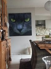 Klantfoto: Green eyes van Emajeur Fotografie, op xpozer