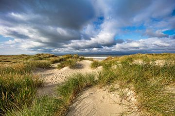 Dünen auf der Insel Vlieland von Frans Lemmens