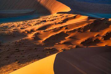 Het leven is een woestijn van veranderende zandduinen van Joris Pannemans - Loris Photography