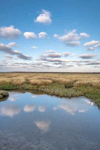 Avondlicht op het Wad Nabij Paesens Moddergat met wolken gespiegeld in stilstaand water. van Harrie Muis