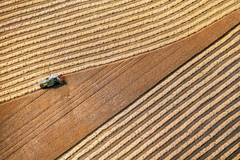 Photo aérienne d'un agriculteur récoltant du grain à Donderen dans la Drenthe sur Frans Lemmens