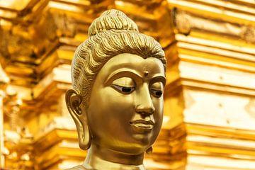 Golden buddha van Ilya Korzelius