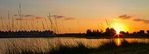 Zonsondergang in Houten Rietplas