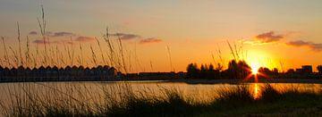 Zonsondergang in Houten Rietplas von fotogevoel .nl