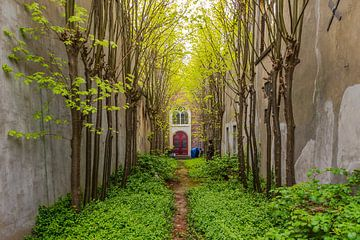 Het Remonstrantse Poortje van Rinus Lasschuyt Fotografie