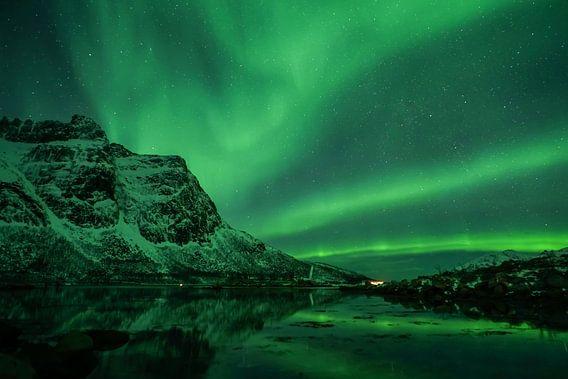 Nordlicht (Aurora Borealis) - Fjord
