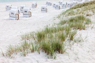 Dünen und weiße Strandkörbe in Zingst von Christian Müringer