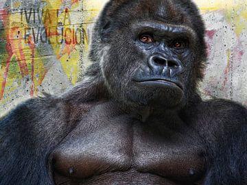 Lang leve de evolutie! van Joachim G. Pinkawa