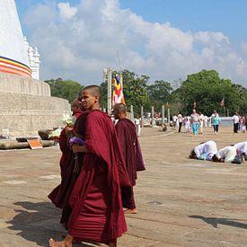 Mensen Monniken bij de Stupa van Wilma Hage