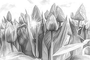 Tulpen van eric van der eijk
