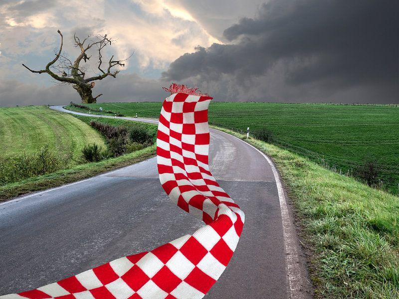 Stormachtig weer van Ton Buijs