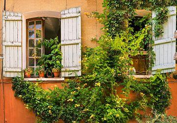Façade française avec plante grimpante et volets