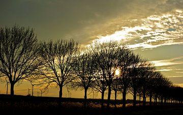 Landschap / lucht / zonsondergang von Moodshots  .nl