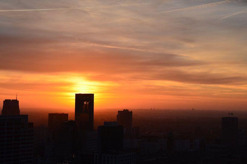 Rotterdam Centrum in the Spotlight van Marcel van Duinen