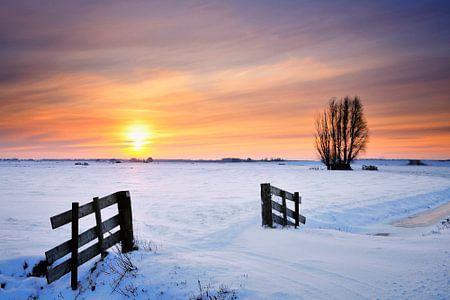 Winterlandschap in de IJsseldelta