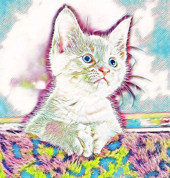 Kitten van Diederik Boersen