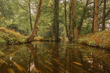 Herbstliche von Jan Koppelaar