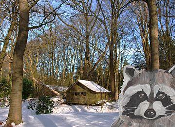 Hütte im Wald mit Waschbär von De Verbeelding