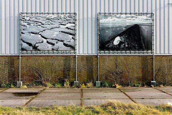 Groningen / Lauwersoog / Wad Naakt (I) / 2012