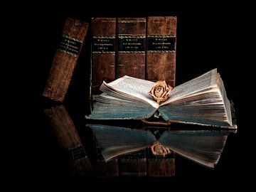 Das offene Buch