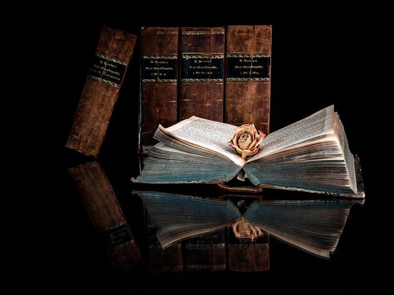 Das offene Buch von Andreas Müller