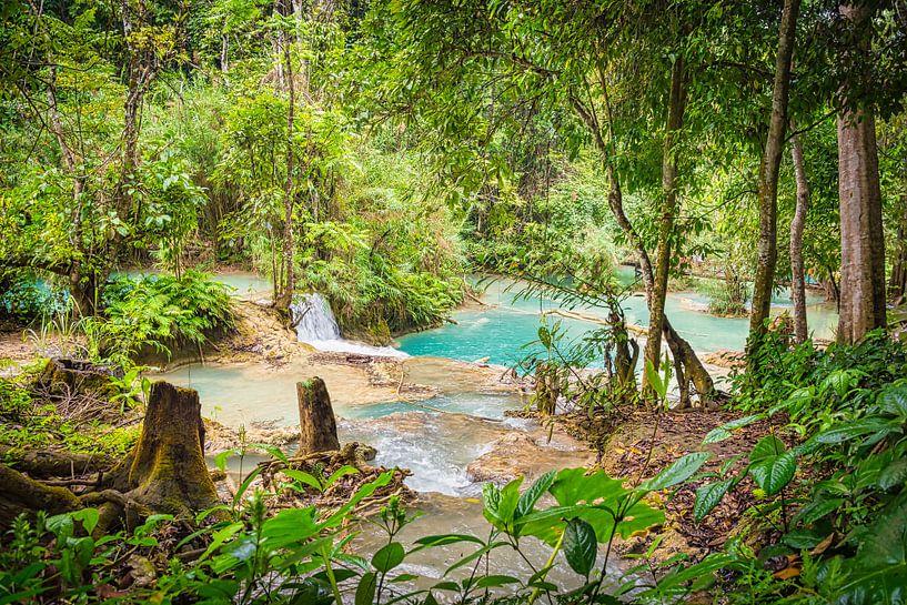 Doorkijkje bij de Kuang Si Watervallen, Laos van Rietje Bulthuis