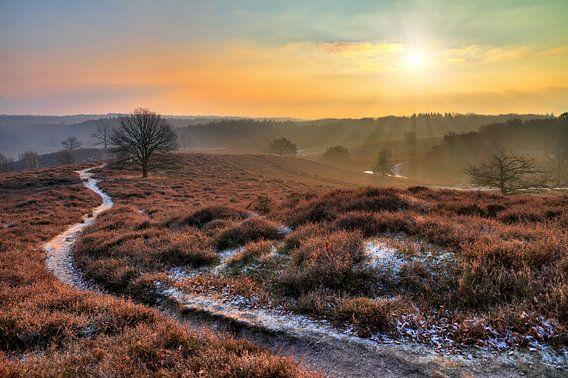 Posbank winter ochtend van Dennis van de Water