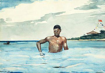 Der Badende, Winslow Homer - 1899