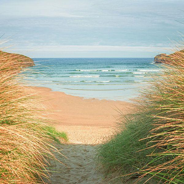 naar het strand van Silvio Schoisswohl