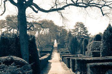 Allgemeiner Friedhof Den Haag von Raoul Suermondt