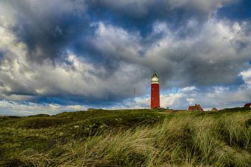 Leuchtturm Eierland von den Texel Dünen von Ricardo Bouman