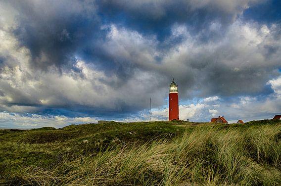 Vuurtoren Eierland vanuit de Texelse duinen van Ricardo Bouman | Fotografie