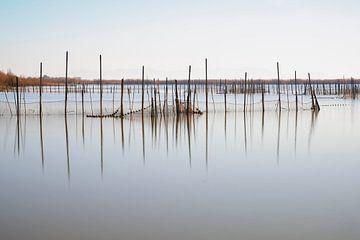 Het meer Laguna d' Albufera van Truus Nijland