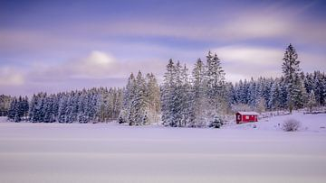 Winter aan de Bärenbrucher vijver in het Harz gebergte van Steffen Henze