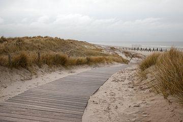 Fußweg zum Strand von Marleen Savert