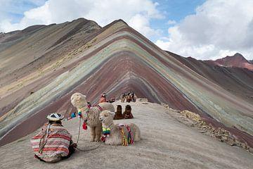 Rainbow Mountain, de zevenkleurige berg van Niki Radstake