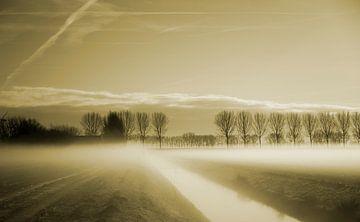 Polderlandschap in de mist van Petra De Wit