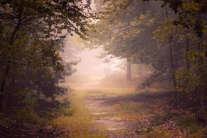 Autumn Mood van Arnoud van de Weerd