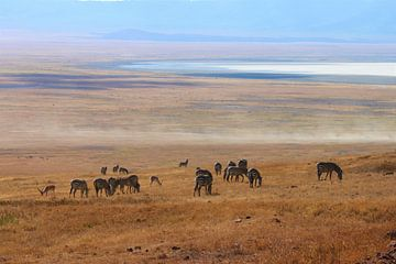 Afrika Landschaft von Roger Hagelstein