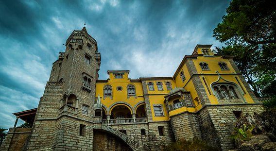Haunted mansion von John Welsing