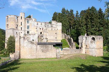 Een vervallen kasteel in Luxemburg. von Rijk van de Kaa