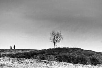 Kalte Tage von Sven Löbbert