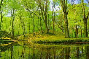 Landgoed Elswout van Michel van Kooten